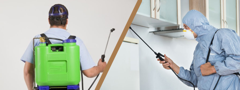 Contact The Ultimate Pest Control Gold Coast