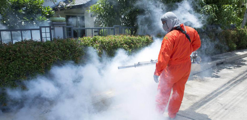 Helpful Tips on Finding The Best Pest Control Company